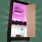The Budster Hydroponic Grow Box