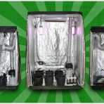 gdtriple 148x148 CFL Hydroponics Starter Kit    from Hydroponics Group