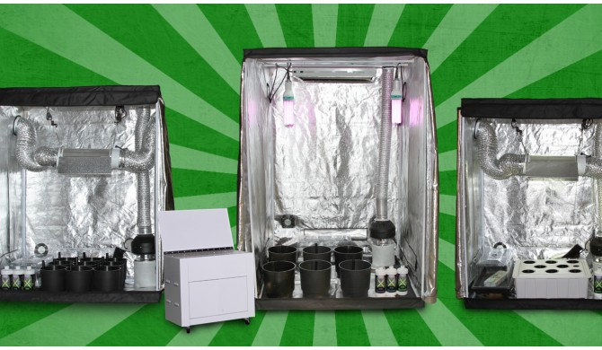 How To Choose The Best Hydroponics Starter Kit For Your Needs